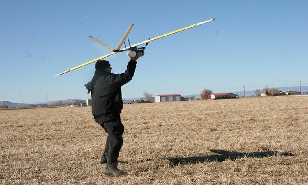 En politibetjent i Mesa County sender dronen Falcon T til værs.