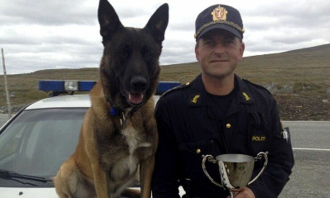 Vidar Neteland og hunden Aron vant Norgesmesterskapet i patruljehund 2013.