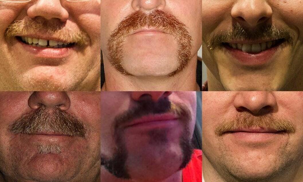 Mange politimenn sparer til politibarter under Movember-kampanjen - mens noen politibarter er permanente.