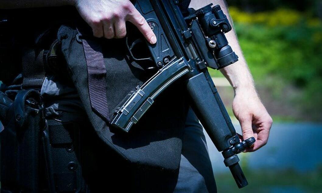 Bevæpnet politi voktet grenseoverganger og offentlige steder under terrortrusselen.