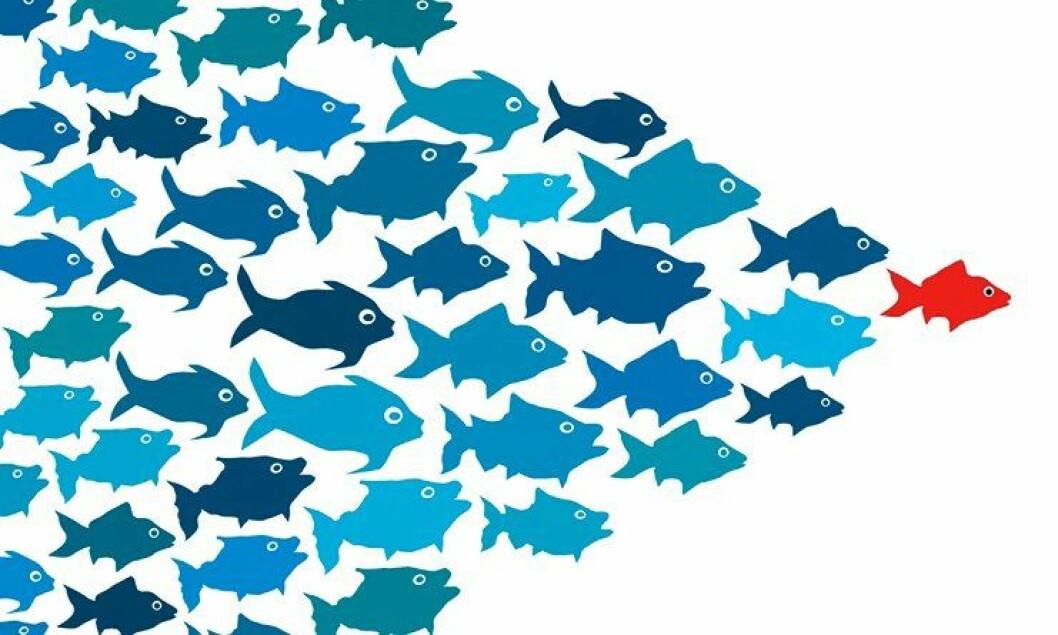 Artikkelforfatterne foreslår et skifte i ledernes perspektiv, fra én til én-ledelse til ledelse av grupper.