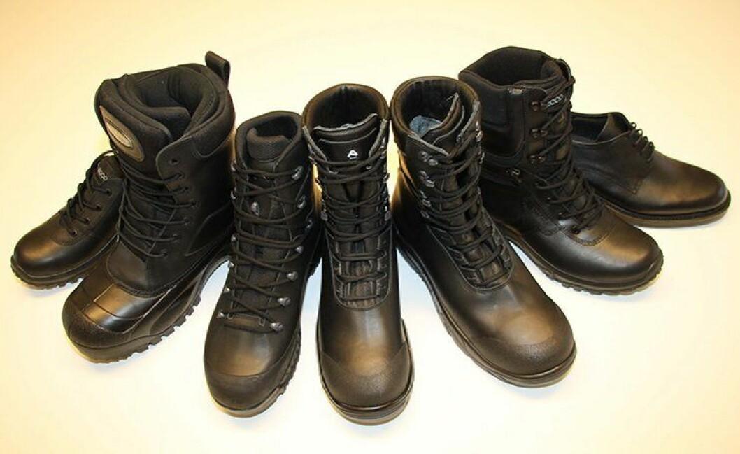 Her er alle politiets nye sko samlet.