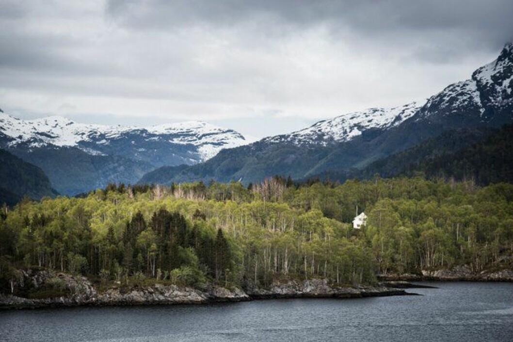 I skoger, mellom fjell og innerst i fjorder bor det folk. Vil nærpolitireformen bidra til at lokalkjennskapen ivaretas i politiet?