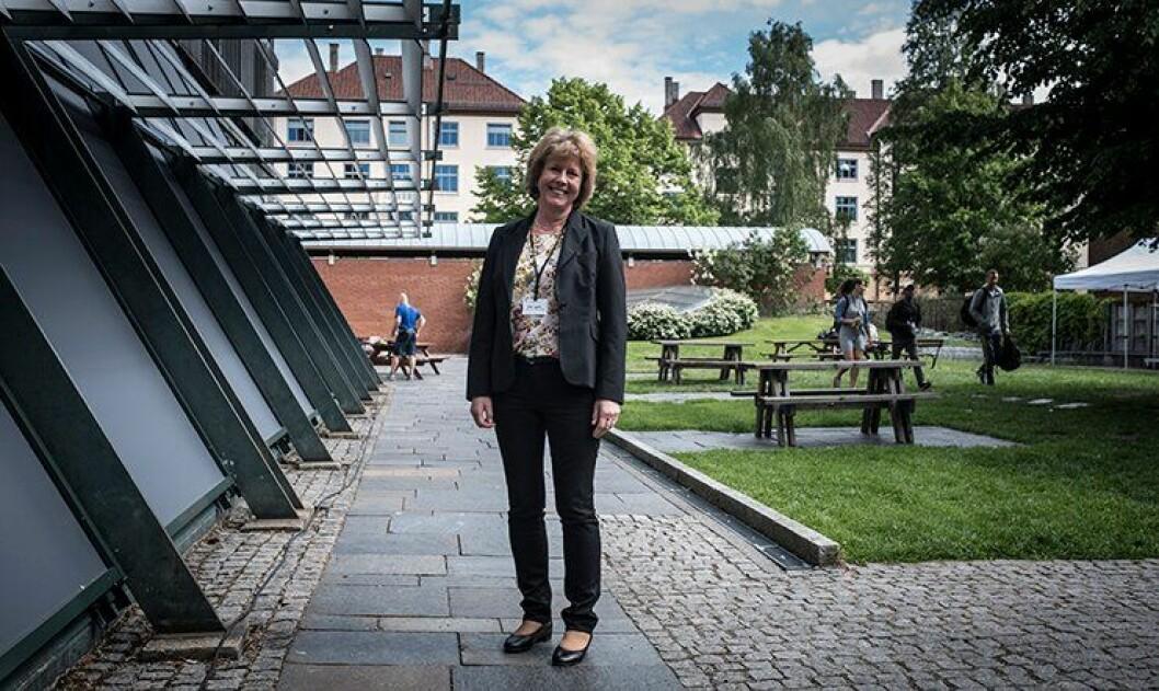 Kari Lynne trekker seg som leder av bevæpningsutvalget, en drøy måned etter at de startet arbeidet.