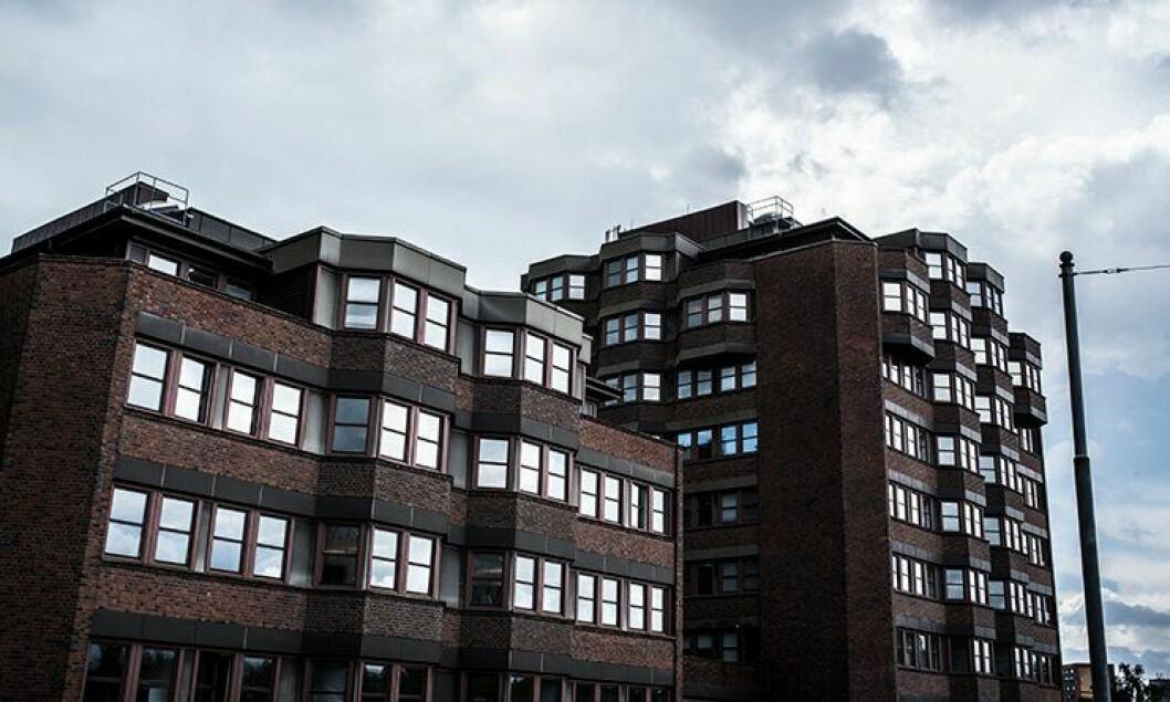 Her hos Politiets utlendingsenhet på Tøyen i Oslo vil en av de fire mannlige søkerne bli sjef.