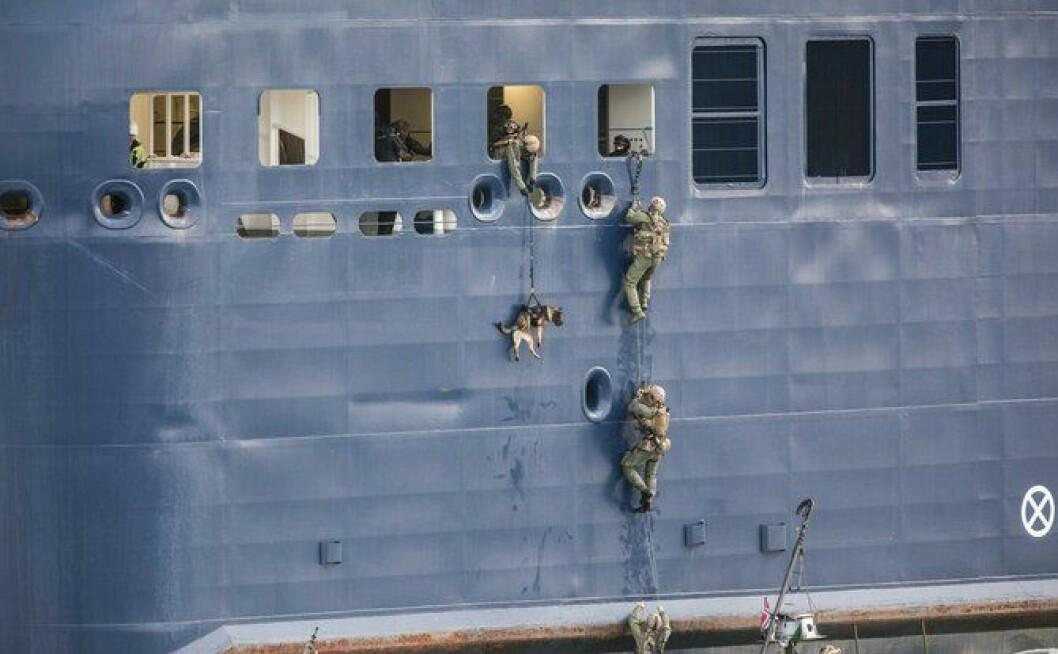 I hengende snøre: Bare et par dunk i siden på vei opp, men ellers går det smertefritt når også bombehundene heises om bord under antiterrorøvelsen på Kiel-ferga i Oslo-fjorden.