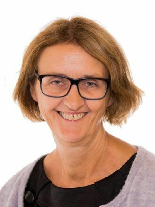 Kari Henriksen, Arbeiderpartiet