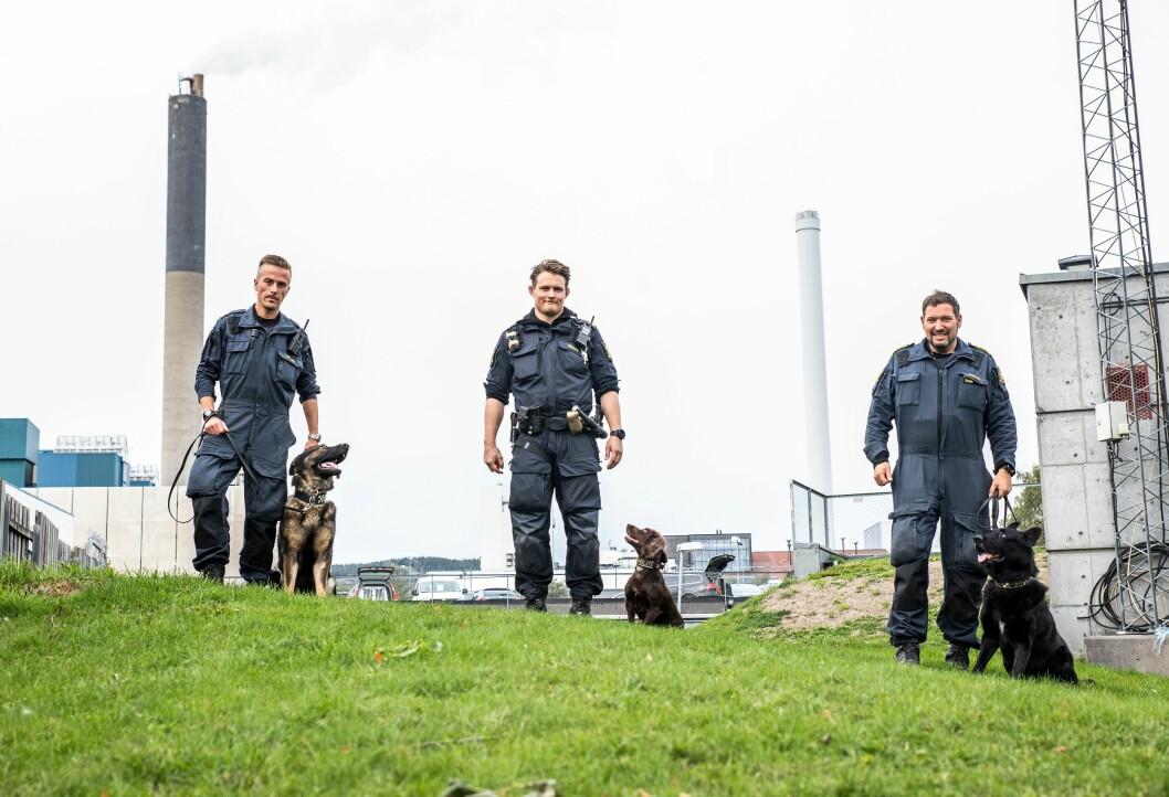 Hundeførerne Kristian Skaarud med Wango, Kristian Daniel Olsen med Lola og Svein Magnus Sønstelid med Qrim utenfor hundetjenesten i Oslo.