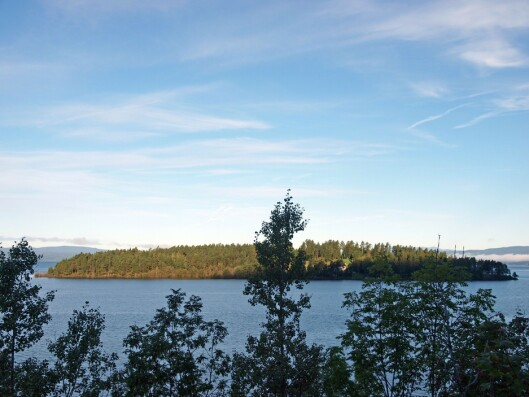 Utøya sett fra landsiden.