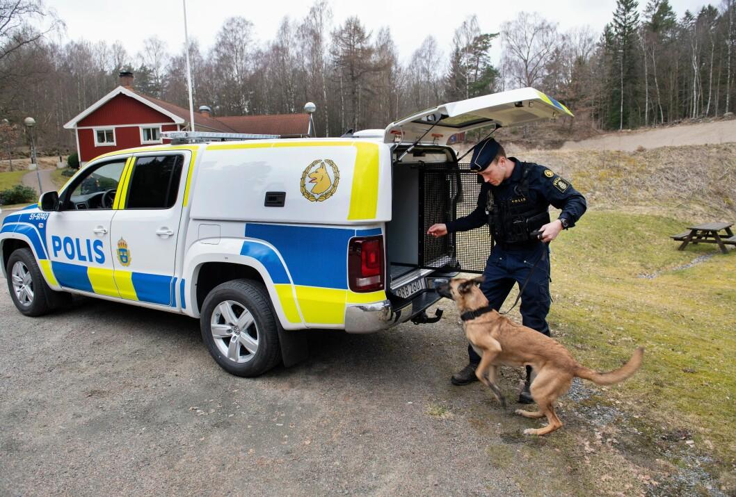 NYE BILER: Hundeburene i de svenske politibilene ble kritisert for å være for små. Nå får svensk politi 300 nye hundebiler, til 224 millioner norske kroner.