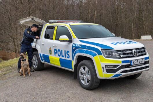 OPPJUSTERING:_ Bilene koster 240 millioner svenske kroner til sammen.