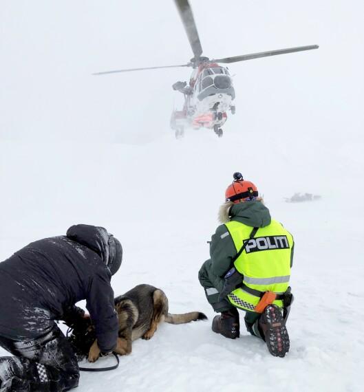 VÆRHARDT: På Svalbard fikk hundene prøve seg i all slags vær.