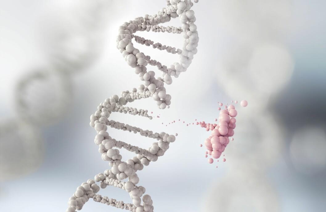 LOVLØST: Lovverket dekker ikke mulighetene ny teknologi gir. Bioteknologirådet anbefaler å sette sammen et utvalg for å se på muligheter og lovgivning.