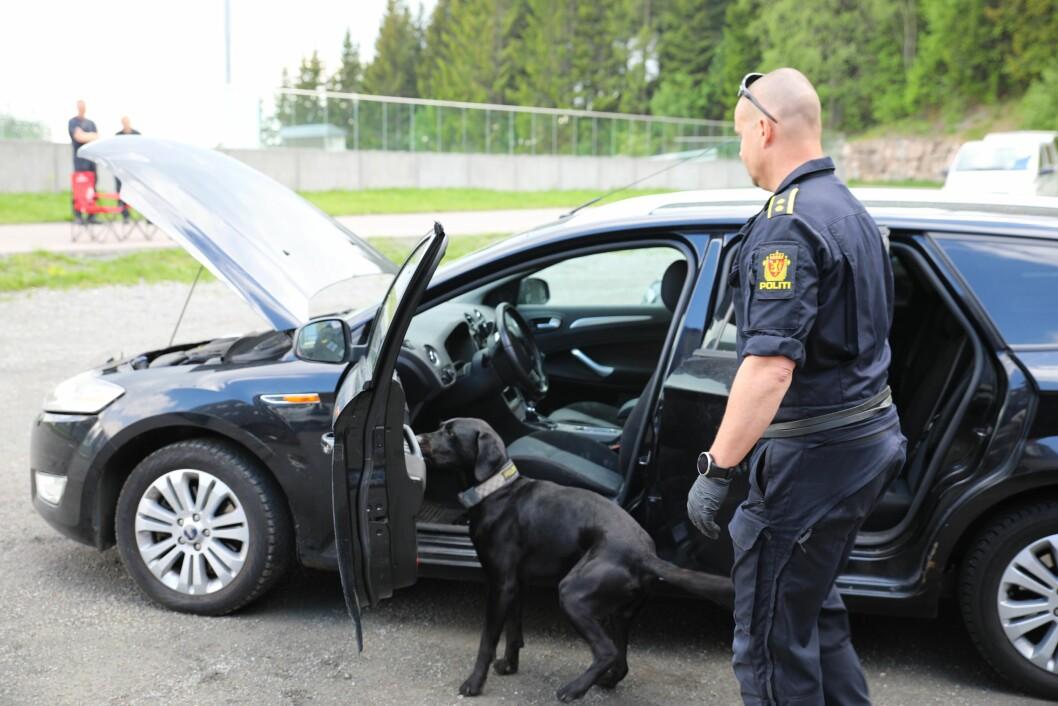 NORDISK MESTERSKAP: Hundefører Bjørn Harald Breili og jaktlabradoren Nemo ble kåret til beste narkotikasøkshund.