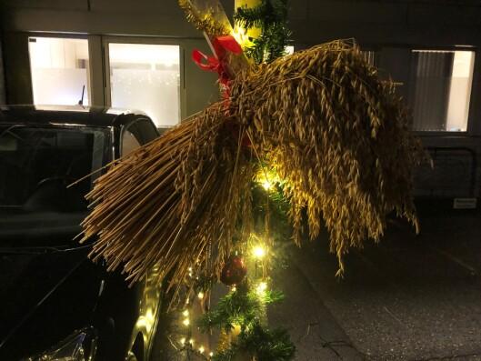 JULENEK: Juleparkeringen har også noe godt for småfuglene.