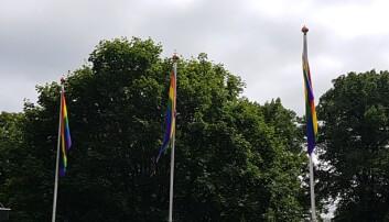 Regnbueflaggene henger også utenfor politihuset på Grønland i Oslo.