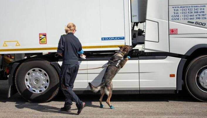 Merete Rilvaag og politihunden Klodrik under tjeneste for Frontex.
