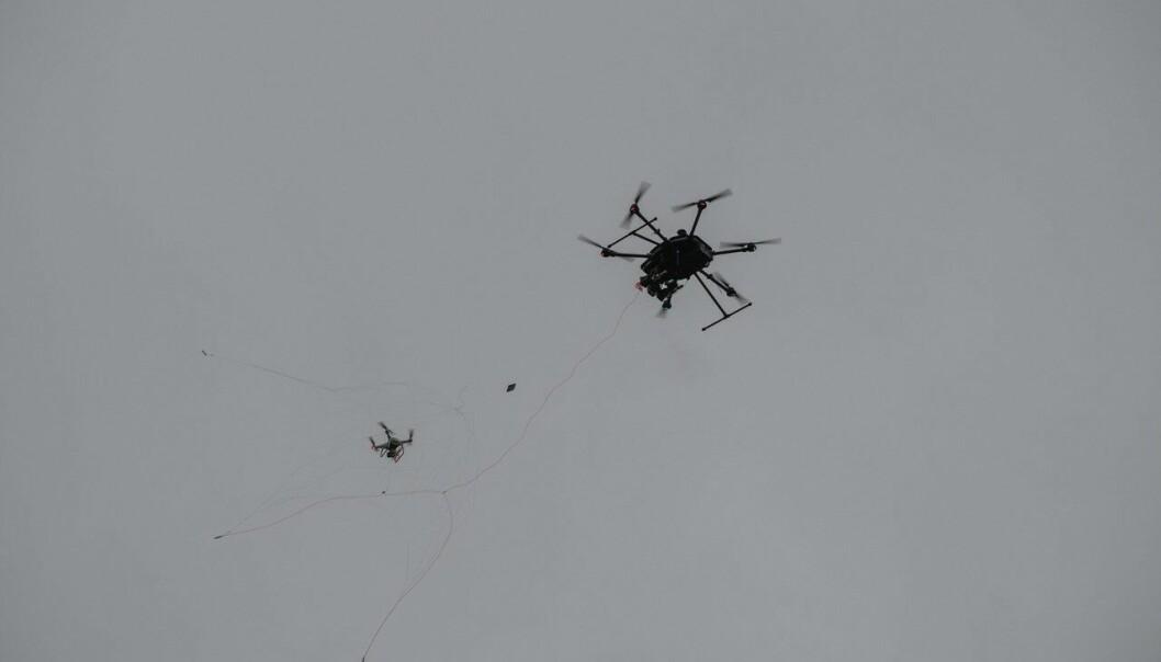 Den mindre dronen blir fanget i nettet og uskadeliggjort.